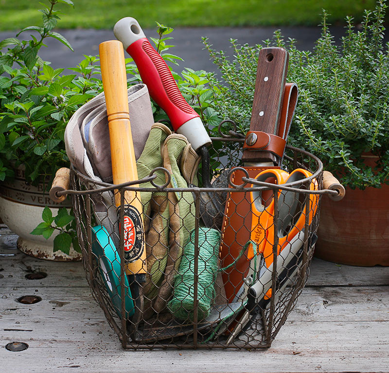 Trusted tools for the vegetable gardener