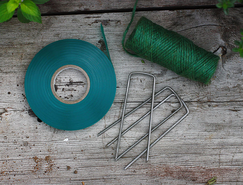 Twine, green garden tape, and garden staples